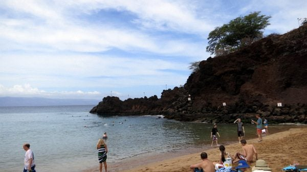 Activities around the Hyatt Regency Maui
