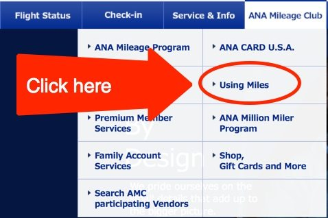 Booking Brussels Airlines With United Miles