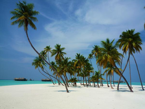 Luxury Travel Expert - Interview With Xavier