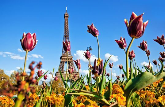 Europe in the Spring for 25% to 50% Off With Flying Blue Promo Awards