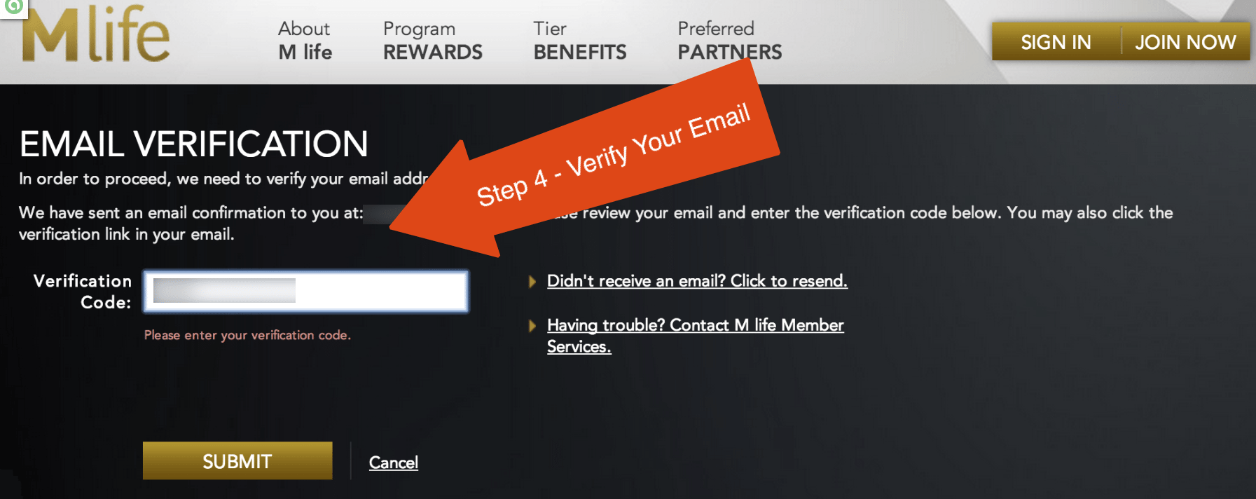Step 4 - Verify Your Email