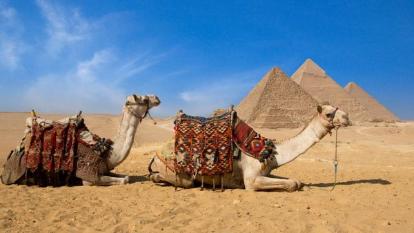 4 Beautiful Ritz Carlton Hotels In The Middle East