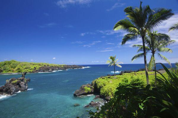 Planning a Hawaiian Vacation With Ink Business Preferred 80,000-Point Bonus