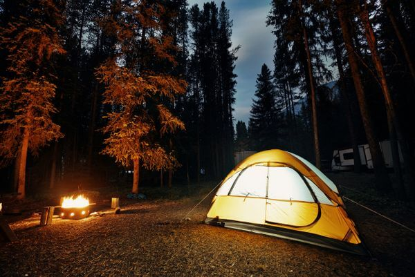 My Review of ReserveAmerica – The Online Camping & RV Reservation Site