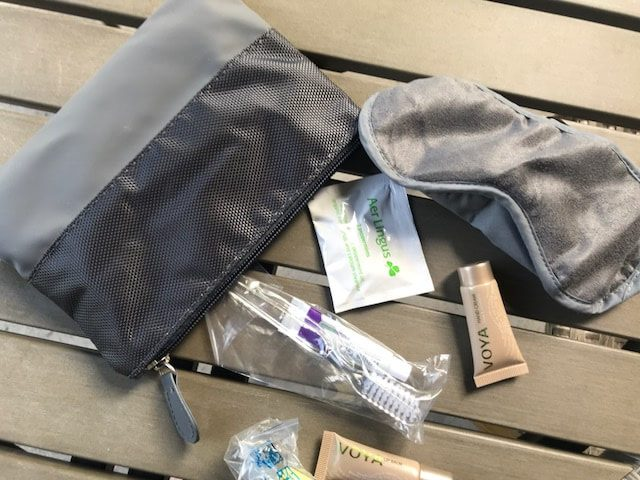 Aer Lingus amenity kit business class small