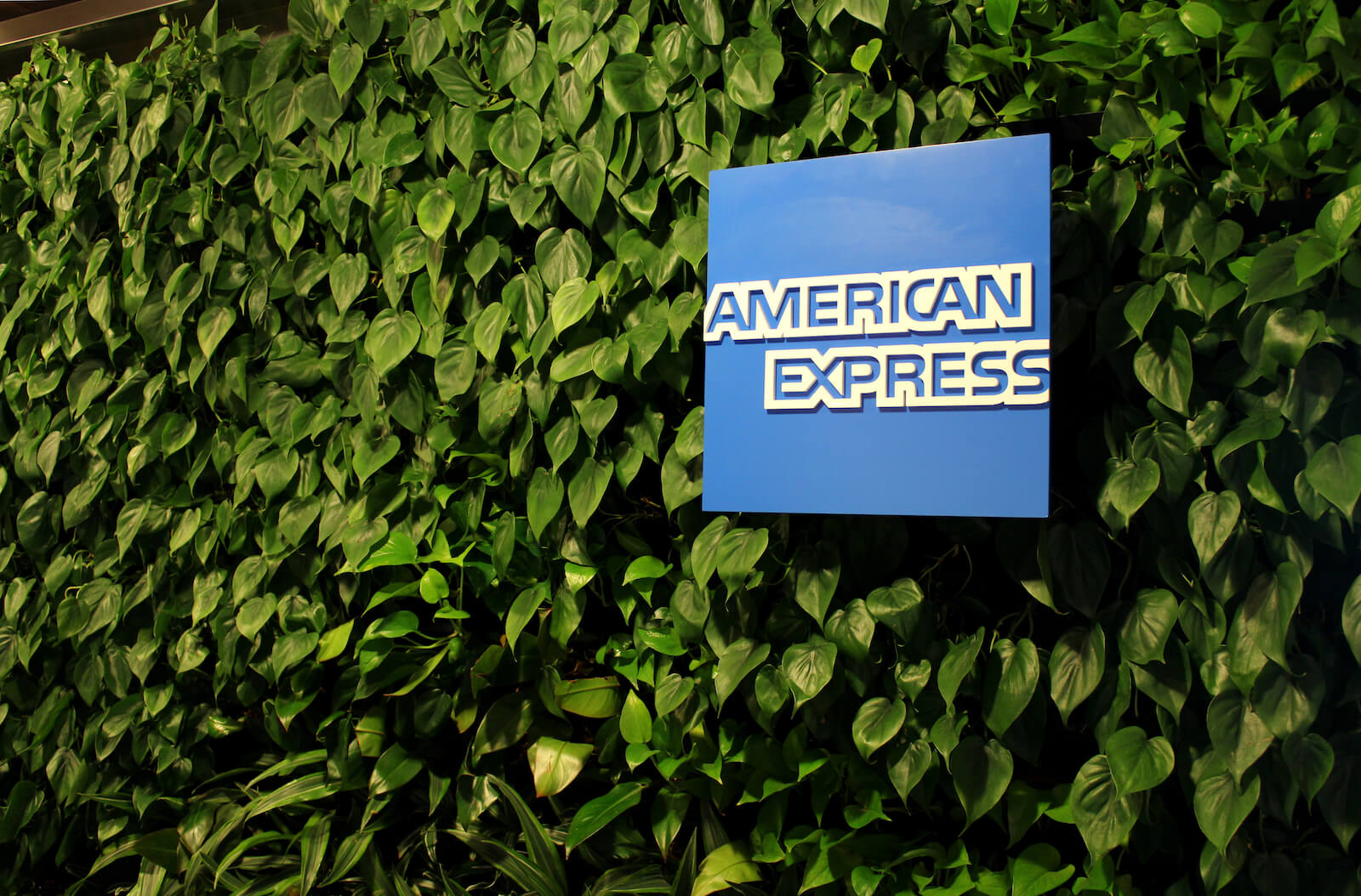American Express Travel portal: A full review