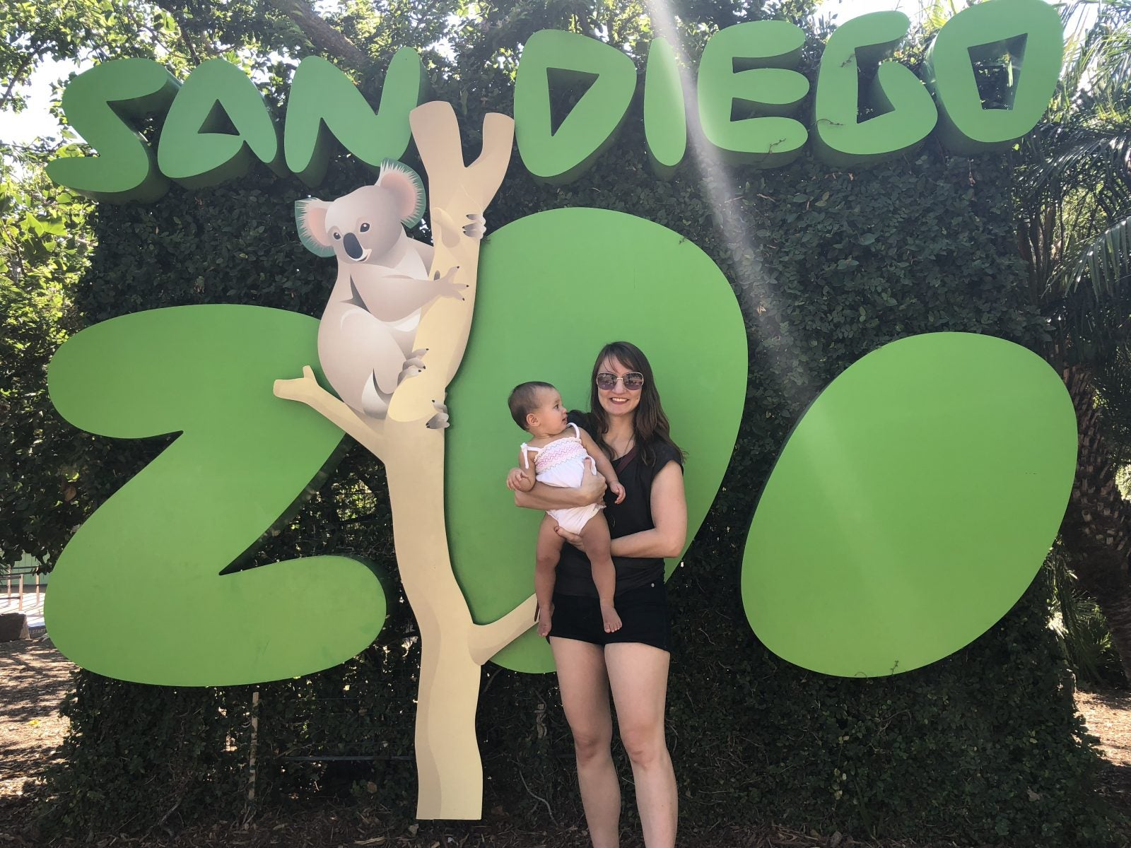How to Save Money (and Time!) at the San Diego Zoo