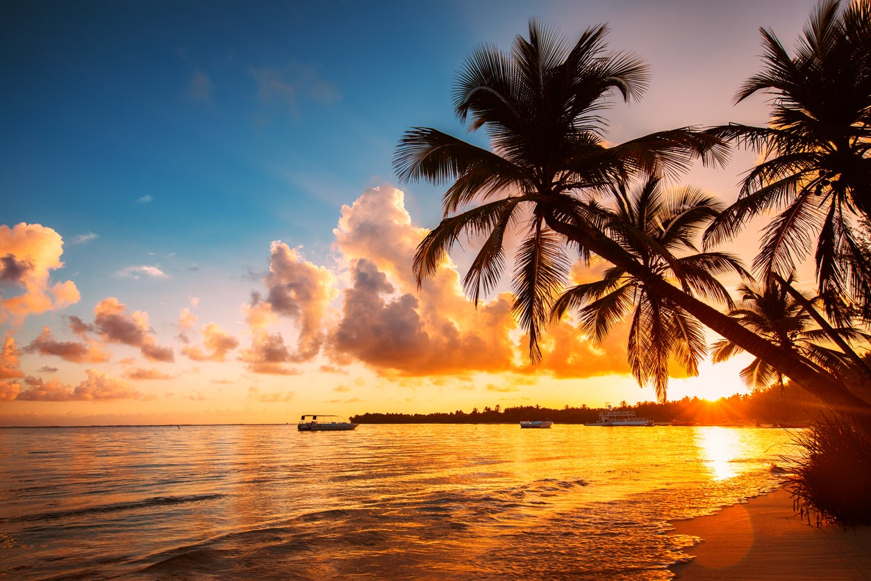 "American Airlines Expands ""Economy Web Specials"" Program: Save THOUSANDS of Miles on Flights to Hawaii (and More!)"