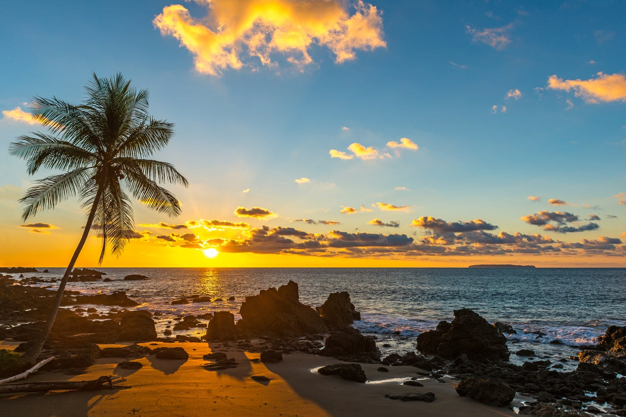 United Airlines Adds ~150 Flights for Spring Break Travel (Use Chase Ultimate Rewards for Free Flights to Hawaii, the Caribbean, and More!)