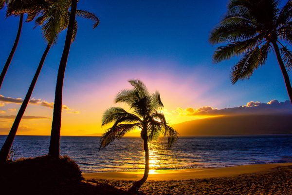 5 Best Marriott Hotels in Hawaii With Points